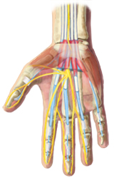 Wrist Pain Treatment